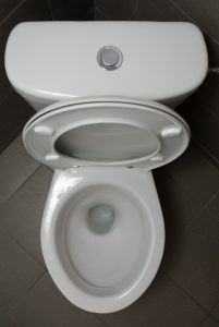 top view of a toilet with the lid up